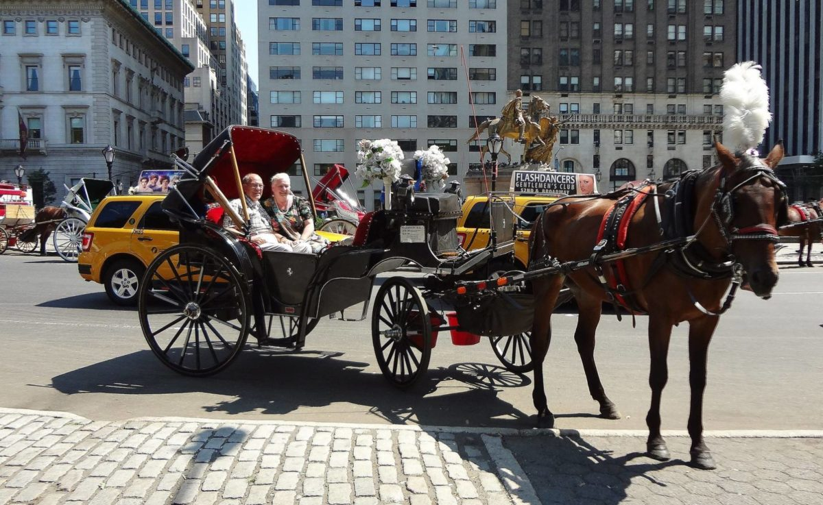 Designated Boarding Areas For Horse-drawn Cabs In Central Park