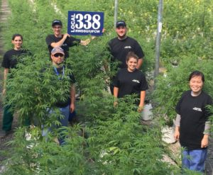Local 338 Cannabis Workers Ratify Contract