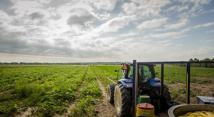 NY Farm Trade Groups Sue to Block State Labor Law