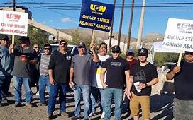 Asarco Strikers Ask Arizona Government to Intervene