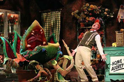 Little Shop of Horrors Revival Is Hilarious but Pricey